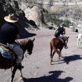 horseback_riding_tour_12