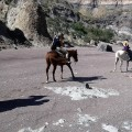 horseback_riding_tour_13